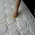 ベッドマットのしみ抜き